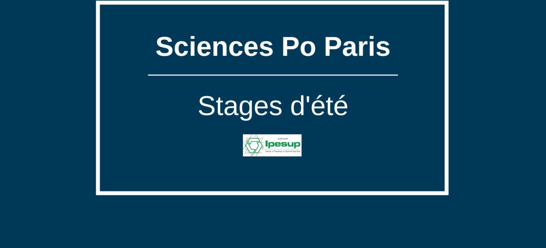Préparez votre entrée à Sciences Po grâce aux stages d'été